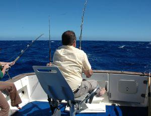 Equipement pour la pêche au gros