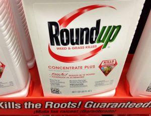 Le desherbant Roundup de Monsanto - copyright Mike Mozart / Flickr CC.