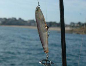 Montage standard pour la pêche au leurre, avec tête de ligne