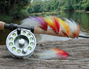 La pêche du pecock-bass demande un moulinet de bonne qualité