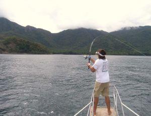 Le moulinet à tambour fixe est plus agréable en action de pêche