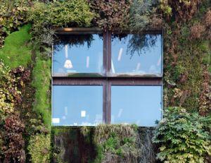 Good construire mur vegetal exterieur 6 mur vegetal - Construire mur vegetal exterieur ...