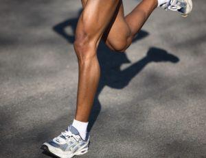Physiologie du sport : le muscle