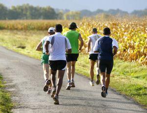 Course à pied : quels muscles faut-il renforcer ?