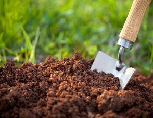 Naturels, chimiques ou encore terreau : quels engrais pour votre sol ?/ iStock.com - malerapaso