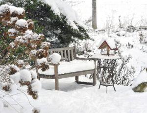 Bien qu'elle s'avère néfaste pour les plantes, la neige peut également faire office de précieux allié...