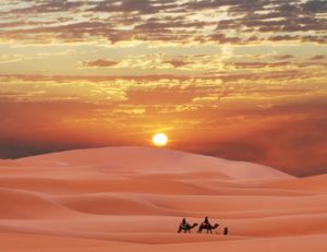 Nouvel an insolite : en plein désert