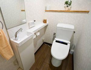 Opter pour les WC japonais : caractéristiques et avantages