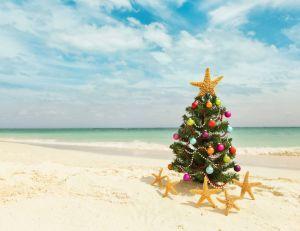Organiser un Noël tropical