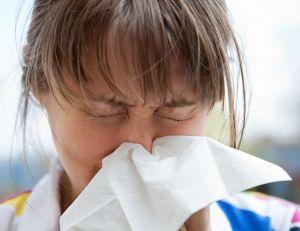 Le phénomène de pandémie grippale