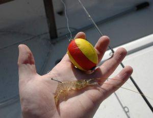 La pêche au bouquet ne se pratique pas au hasard