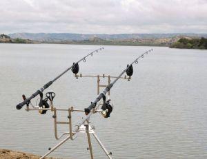 Matériel pour la pêche de la carpe