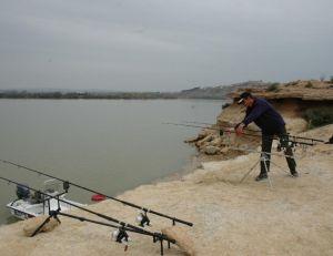 Il n'existe pas de fermeture de la pêche pour la carpe