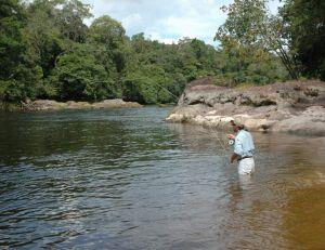 Pêcheur au streamer