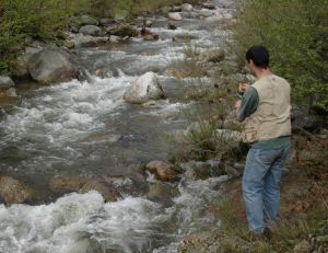Où pêcher la truite