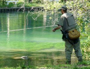 Les permis de pêche