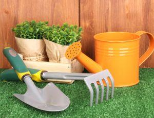 Connaître les petits outils de jardin