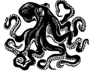 Haliphron atlanticus ?