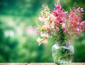 planter des fleurs au printemps pour des bouquets toute l. Black Bedroom Furniture Sets. Home Design Ideas