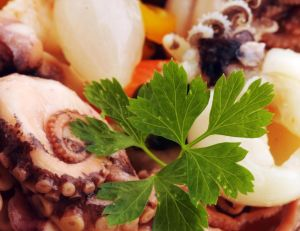 La pieuvre dans nos assiettes