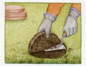 Decaisser la pelouse