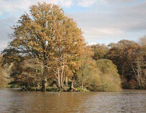 Reconnaître une rivière poissonneuse