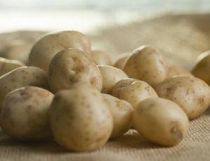 Alex Craig, un jeune entrepreneur, propose d'envoyer des messages écrits sur des pommes de terre...