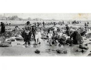 Pêche à pied des crabes au Havre, début du XX ème siècle