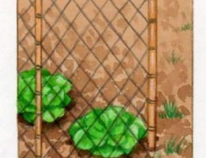 Protection contre les campagnoles, les mulots et les lapins