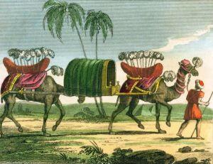 Le chameau et les hommes