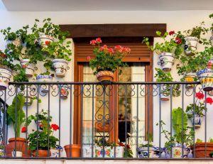 quel genre de fleurs choisir pour son balcon et sa terrasse. Black Bedroom Furniture Sets. Home Design Ideas