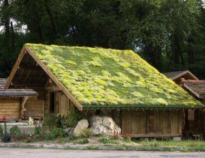 Rendre sa maison plus écologique