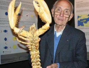 """Robert Sinsoilliez, écrivain historien de la Marine, auteur de """"La pêche à pied"""", Flamarion 1987, avec un homard énorme"""