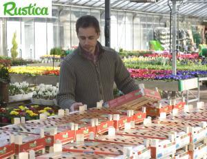 Acheter des végétaux ©C.Hochet/Jardinerie Ferme de Gally