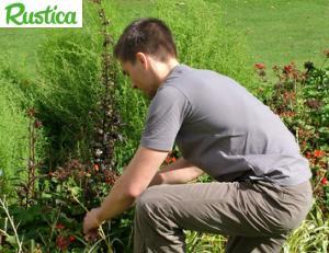 Devenir jardinier