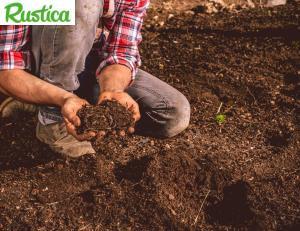 En quoi consiste le travail du sol ? / iStock.com - CasarsaGuru