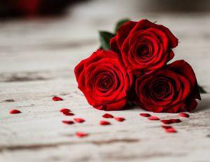 Saint-Valentin : décryptez le langage des fleurs