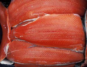 Les États-Unis viennent d'autoriser le saumon OGM