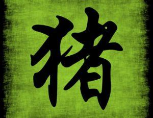 Signe chinois : le Cochon