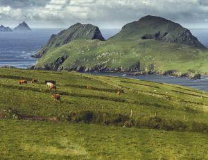 L'île de Skellig Island a vu sa popularité bondir soudainement grâce à Star Wars VII...