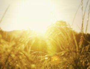 Le soleil : le connaissez-vous vraiment ?
