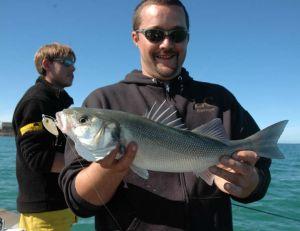 Un petit stickbait est idéal pour pêcher le bar dans les chasses