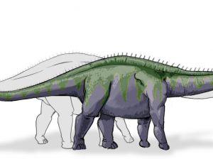 Gravure représentant une reconstitution du supersaure