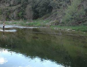 Les techniques de pêche à la truite