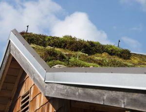 Avantages et inconvénient d'un toit végétal