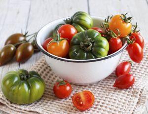 Tomates anciennes : vous avez l'embarras du choix !