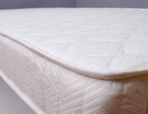 Traiter les punaises de lit