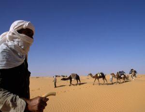 Trek dans le désert : nos conseils