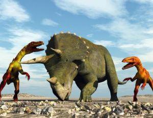 Tricératops et autres cératopsiens