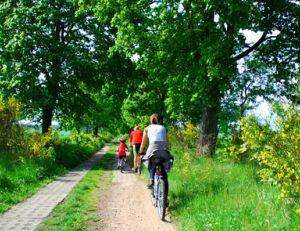 Choisissez bien votre type de vélo